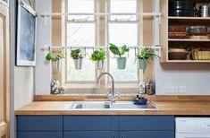 Kitchen-Herb-Garden-Ideas-Picture-5.jpg (1000×655)