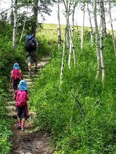 The BEST short hikes near Calgary Kananaskis Version. Only 3-6 km return and perfect for families! Featuring Flowing Water Trail, Forgetmenot Pond, Ptarmigan Cirque, West Wind Pass, Black Prince Cirque, and Elbow Lake.