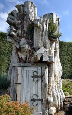 What can we do with that tree stump? This is in the gardens of Larnach Castle. Dunedin, New Zealand, which we are totally going to visit! Old Buildings, Bird Houses, New Zealand, Places To Go, Around The Worlds, Landscape, Backyard, Treehouses, Tree Stump