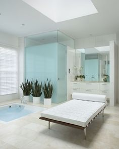 Snake plants in the master bathroom