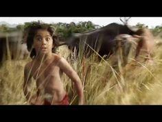 Doblado Doblado: El libro de la selva