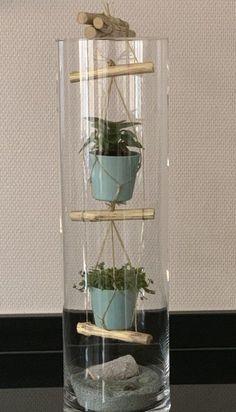 Indoor Garden, Indoor Plants, Mini Plantas, Tall Glass Vases, Rope Ladder, Deco Nature, Decoration Plante, House Plants Decor, Terrarium Diy