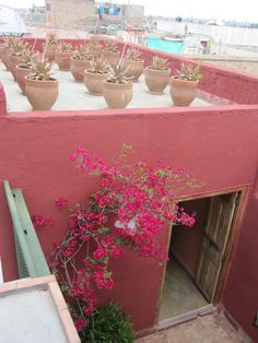blue wall better to show off pink boganvillia Modern Moroccan, Moroccan Style, Places To Travel, Travel Destinations, Rammed Earth Homes, Airstream Interior, Coming Up Roses, Adventure Awaits, Deco