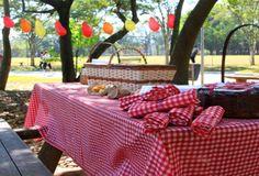 festa no parque decoração 4