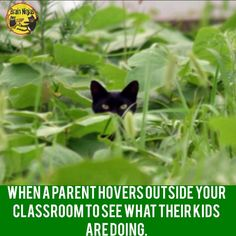 22 Back-To-School Memes All Teachers Will Relate To Classroom Humor, Classroom Rules, School Quotes, School Memes, Teaching Memes, Back To School Teacher, Mission Impossible, School Readiness, Classroom Inspiration