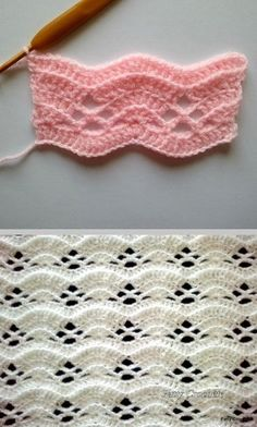 Lacy Shell