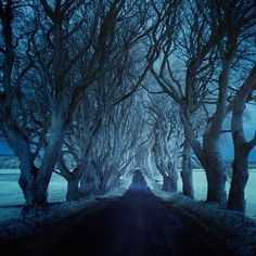 Photographer Andy Lee captures poetic images of dark and lonely roads throughout his travels around the world.