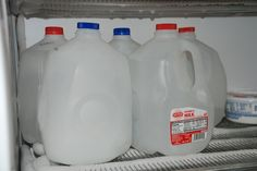 when we go camping instead of using bags of ice we use milk jugs and freeze them as Blocks of ice and they last for four or five days to keep things cold in the cooler.