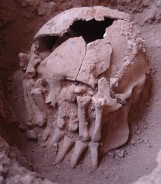 Amputated hands had been laid over the face of the decapitated skull and arranged opposite each other.
