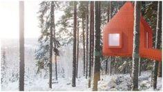 Sweden tree house hotel
