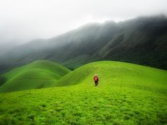 Munnar, India  -- looks significantly more lush than what I ever saw in india. Even in the south, no rolling hills and super green landscapes. Dusty all over the land north or south, and extreme heat, but worth every minute. I'd go back in a flash.