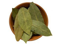 VIDEO: Co se začne dít, když spálíte bobkový list? Nordic Interior, Home Remedies, Plant Leaves, Health, Plants, Adhd, Aloe Vera, Garden Ideas, Fitness