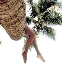 Palm trees and bare legs, summer time! Summer Feeling, Summer Sun, Summer Of Love, Summer Beach, Summer Vibes, Weekend Vibes, Foto Pose, Island Life, Beach Bum