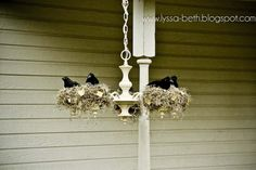 Halloween outdoor crow's next chandelier. This is truly one of the coolest things I've ever seen! You can always find chandelier (of various working degrees) at the thrift store and those crows abound at the dollar store this time of year.