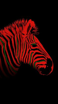 Low-end Zebra - - Low End Theory, A Tribe Called Quest, Colour Inspiration, Double Exposure, Hiphop, Vector Art, Disney Characters, Fictional Characters, Stripes