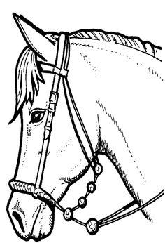 Coloriage Cheval Avec Caleche.59 Meilleures Images Du Tableau Coloriages Chevaux En 2019 Horses