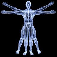 Resultados de la Búsqueda de imágenes de Google de http://us.123rf.com/400wm/400/400/dimdimich/dimdimich1110/dimdimich111000010/10857065-hombre-de-vitruvio-bajo-rayos-x-aislado-en-negro.jpg