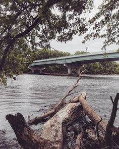Too weird to live and too rare to die. So now what?  #minneapolis #minnesota #outdoors #onlyinmn #exploremn #cityofminneapolis #vsco #vscocam by _ashdanger