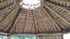 Cedar roundhouse roof in cedar.
