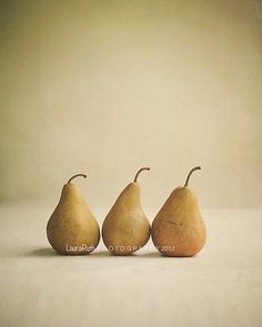 Kitchen Photography -Food Photo - Pears Fruit - Vintage Inspired - Home Decor - Kitchen Decor - Fine Art Photography 8x10 - Bosc Pears
