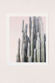 Wilder California Summer Cactus Art Print - Urban Outfitters
