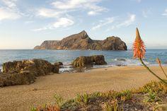 Picture of Praia do Porto Santo Porto Portugal, Famous Places, Algarve, Beach Resorts, The Good Place, 1, Island, Landscape, Water