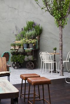 casadecor madrid 2013-cuca-garcia-restaurante-1. What a lovely way to display herbs and pot plants
