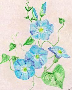 Morning Glory Watercolor Print Floral by ValerieNusbaumAandD