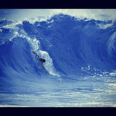bodysurfing  Sandy Beach  Oahu. Been there, done it! 30 years back
