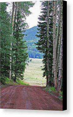 Arrow Head Ranch Colorado Canvas Print by Tom Janca.  All canvas prints are professionally printed, assembled, and shipped within 3 - 4 business days and delivered ready-to-hang on your wall. Choose from multiple print sizes, border colors, and canvas materials.