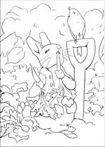 Kids-n-fun   29 coloring pages of Peter Rabbit