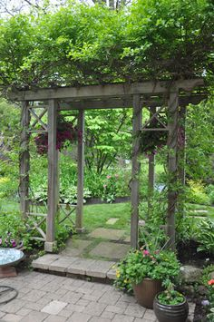 The arbor creates a doorway to the backyard patio. (This view is from the patio looking back toward the alleyway. I believe that the vine on the arbor is a ...
