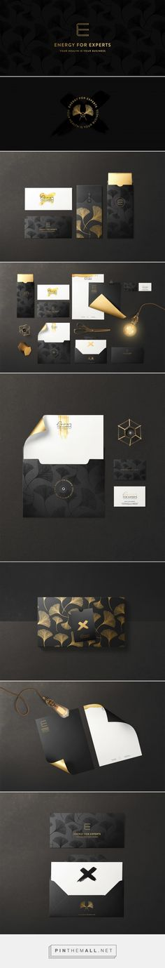 Energy for Experts Branding By Cocorrina