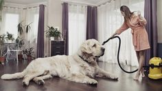 Independent Reviews | Best Vacuums For Pet Hair 2016 | GroomNStyle
