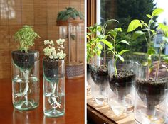 AD-Creative-DIY-Gardening-Ideas-With-Recycled-Items-21