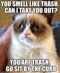 Anti-(questionable) pick up lines with Grumpy Cat
