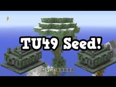 Minecraft Xbox 360 / PS3 TU49 Seed - 2 Temples & Snow Jungle