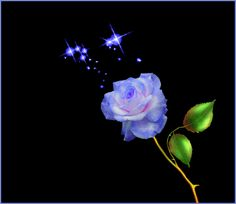 purple rose by Artwork Type: Painting; Flowers Gif, Water Flowers, Photo Background Images, Photo Backgrounds, Passion Gif, I Love You Honey, Beautiful Flowers, Beautiful Pictures, Beautiful Hearts