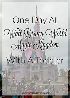 Only have a single day at the Magic Kingdom? Find out how to make the most of your visit, and what items we recommend for the trip.