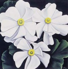 $30 33x33cm Mt Cook Lily by Diana Adams