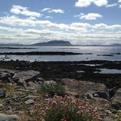 Wandering around Raghly, County Sligo along the Wild Atlantic Way Wander, Mountains, Nature, Travel, Viajes, Traveling, Nature Illustration, Off Grid, Trips
