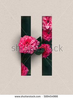 Unique Letter H alphabet made of real blooming flowers and leaves with paper cut. Illustration of floral alphabet collection for design project, poster, card, invitation, brochure and scrapbook