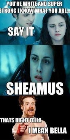 Lmao Only Wwe Or Sheamus Fans Will Get This! Xd by - A Member of the Internet's Largest Humor Community Wrestling Memes, Watch Wrestling, Raw Wrestling, Wwe Quotes, Wwe Funny, Funny Memes, Wwe Raw And Smackdown, Sheamus, Wwe Tna