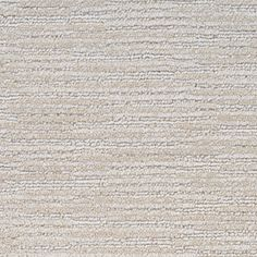 Stainmaster Plantation Cove Petprotect Tortoise Shell Cut And Loop Carpet Sample S405873tortoise-9749