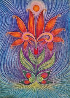 Tulip-Hearted Double Lilly in Magnetic Field
