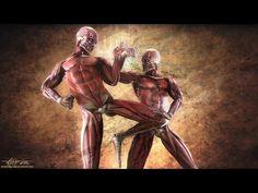 Human Weapon - Savate Front Kick Chasse Bas - YouTube