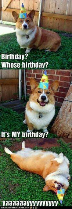 Whose Birthday???