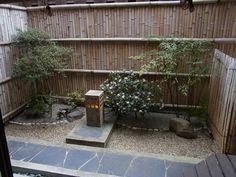 fern pebble gardens - Google Search