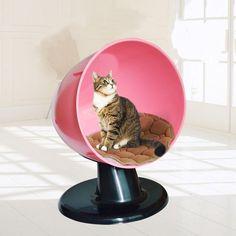 Cat Kitten Pet Plastic Nesting House Furniture Bed