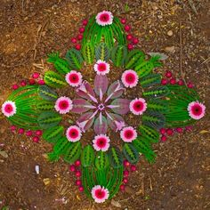 I love nature mandalas - natural elements like leaves and flowers can be arranged like this on my website or just sprinkled here and there like on Ani's website